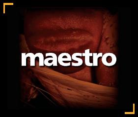 maestro (1)